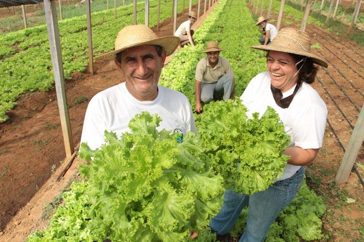 Agricultores familiares de Ibiassucê e Pindaí devem receber auxílio Garantia-safra