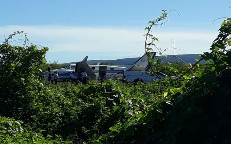 Ibotirama: Avião com doses da vacina da Covid-19 bate em jumento em pista de aeródromo