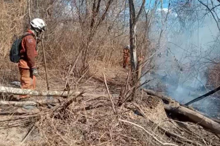 Incêndio descontrolado em Barra, no Oeste da Bahia, pode ter sido provocado por queimadas em fazendas