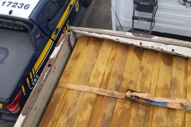 Motorista é detido por transportar madeira ilegal e mostrar documentos falsos no norte da Bahia