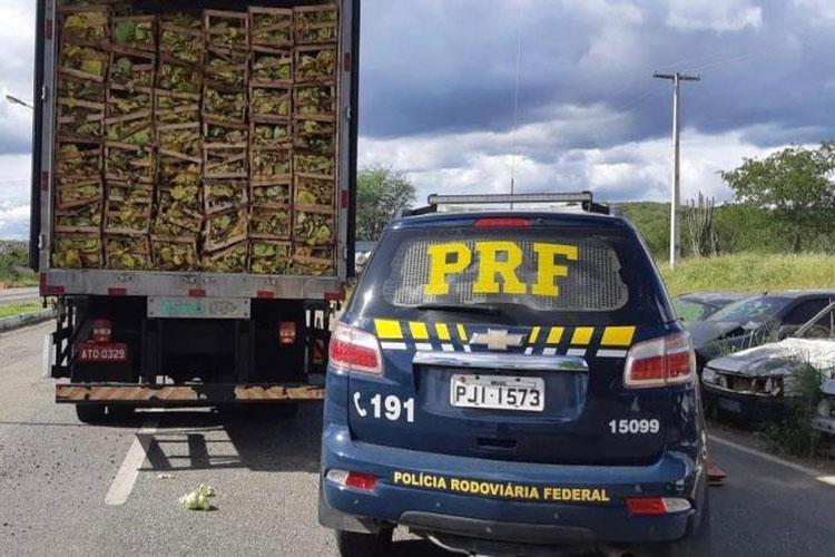 PRF apreende grande carga de cigarros contrabandeados na BR-116 na cidade de Jequié