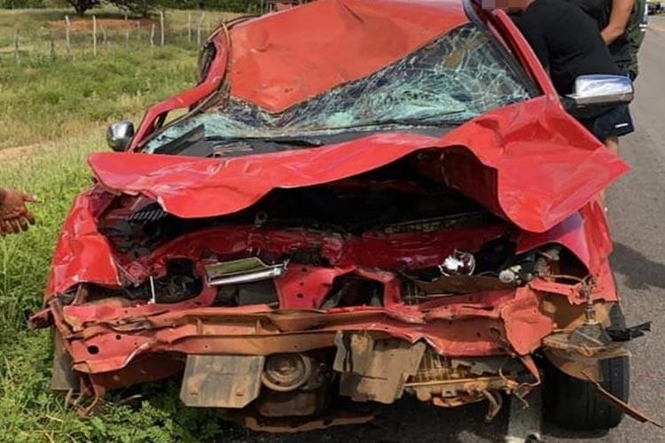 BA-148: Veículo bate em animal solto na pista na comunidade de Fazendinha em Dom Basílio