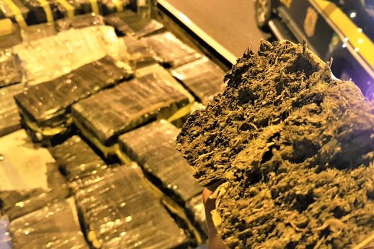 Jequié: Motorista de caminhão tenta fugir e polícia encontra 1,8 t de droga