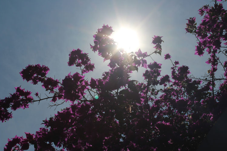 Primavera quente com calor de 41°C em Brumado