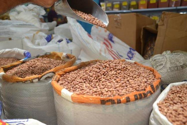 Safra baiana de grãos poderá ter esse ano um recorde histórico