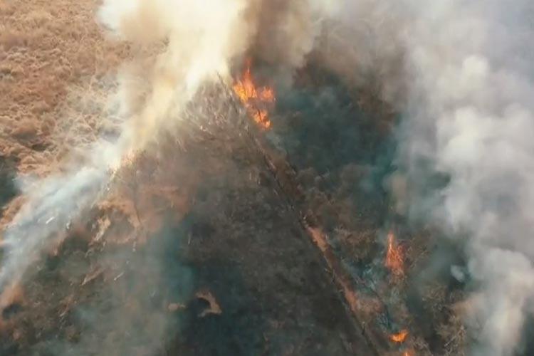 Incêndio destrói 90 hectares de vegetação em Guanambi