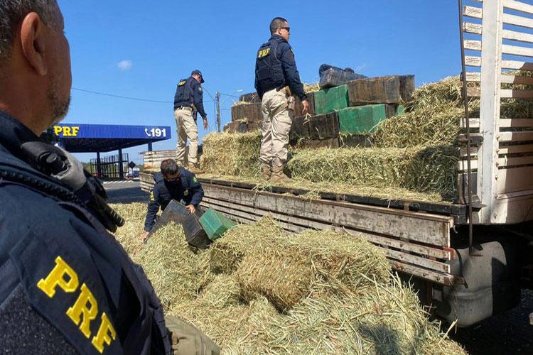 Conquista: Motorista é preso com quase três toneladas de maconha em carga de feno