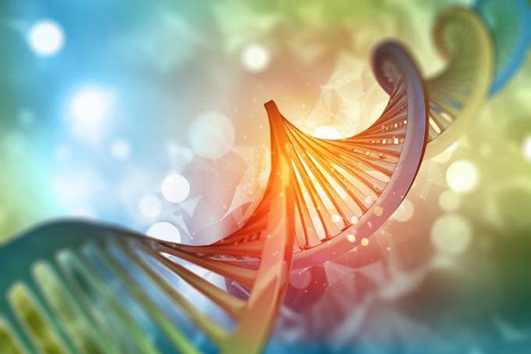 Telemedicina vai melhorar o atendimento genético no Brasil