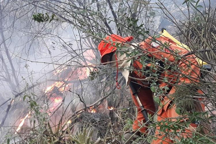Incêndio atinge área de mata entre Livramento de Nossa Senhora e Rio de Contas