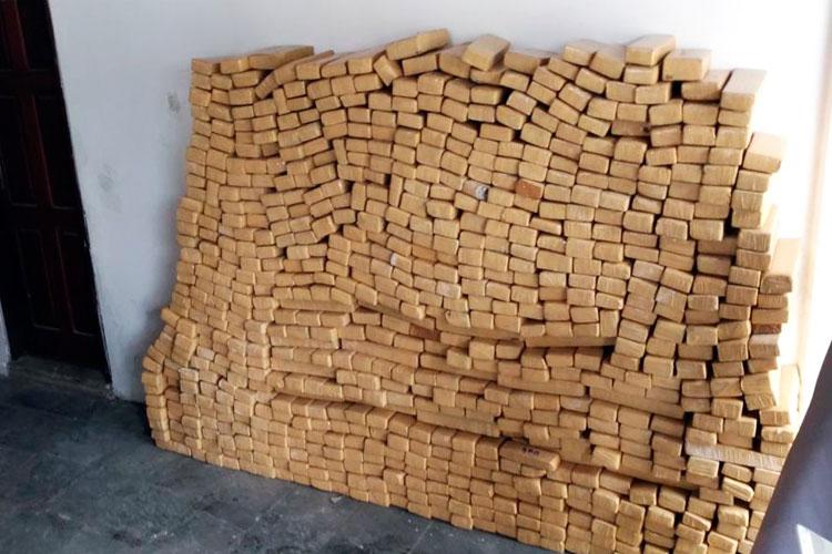 Mais de 800 kg de maconha são apreendidos em caminhão na cidade de Feira de Santana