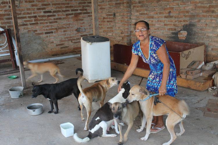 Prefeito de Brumado veta projeto de lei em defesa dos animais