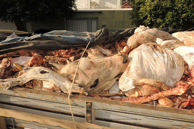 Brumado: Adab detecta que animal de Dom Basílio tem laudo comprovado de tuberculose bovina