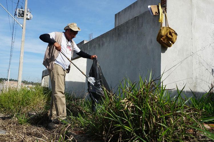 Brasil registra quase 600 mil casos de dengue em 2019