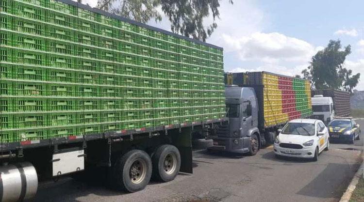 Sudoeste da Bahia: Caminhões são apreendidos com aves transportadas irregularmente na BR-116