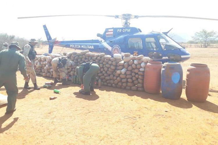 Livramento: Durante operação, polícia encontra cerca de 1 tonelada de maconha e R$ 177 mil