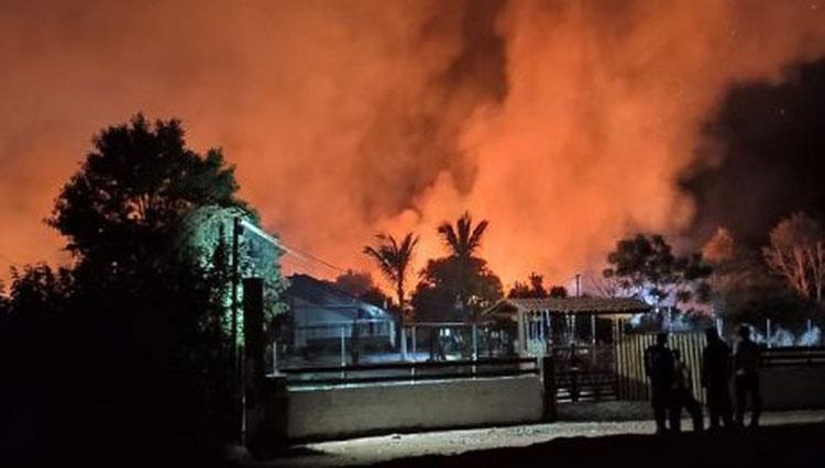 Incêndio de grandes proporções atinge plantação de café na zona rural de Barra do Choça
