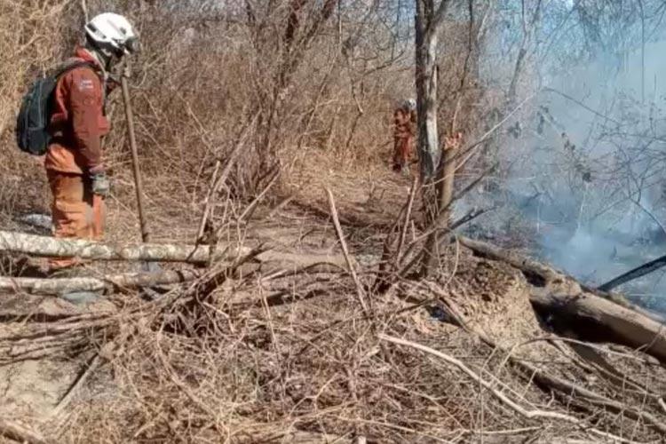 Incêndio florestal na cidade de Barra entra no 11º dia e está próximo de ser controlado