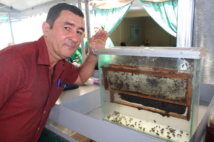 Brumado: Apicultor de Aracatu expõe colmeia em aquário durante feira da agricultura familiar