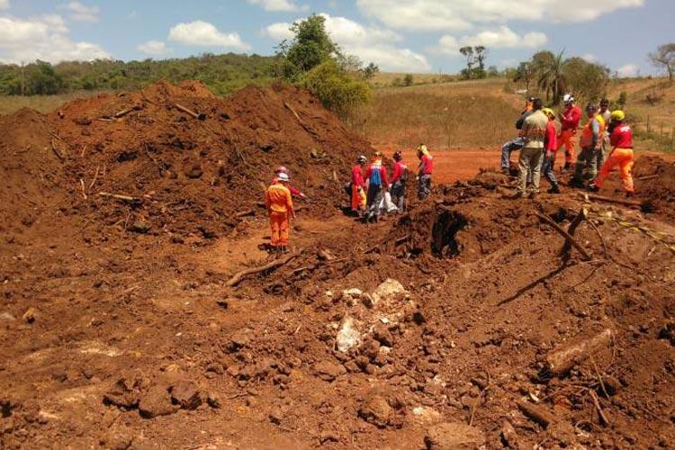 Brumadinho: 253º corpo é encontrado; 17 seguem desaparecidos