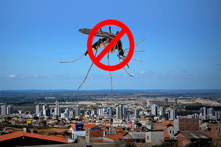 Vitória da Conquista em alerta com infestação do mosquito da dengue nas alturas
