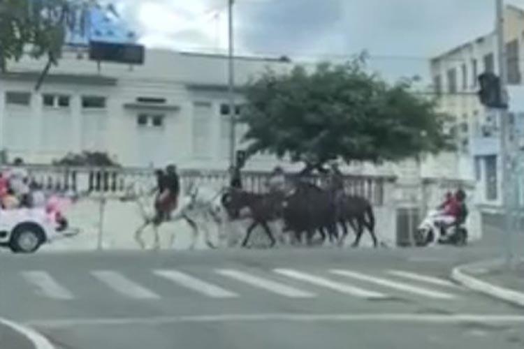 Sem máscaras, moradores de Jequié participam de cavalgada