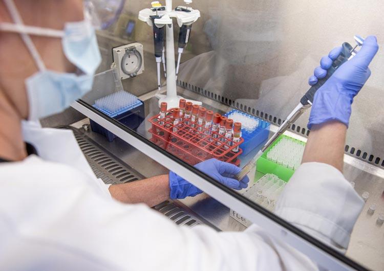 Covid-19: Oxford vê vacina com 'forte resposta imune' em voluntários idosos