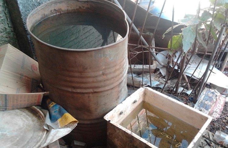 Além da dengue, casos de zika e chikungunya preocupam autoridades de saúde baianas