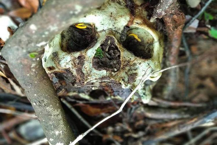 Crânio humano é encontrado às margens da nascente do Poço Azul em Rio de Contas