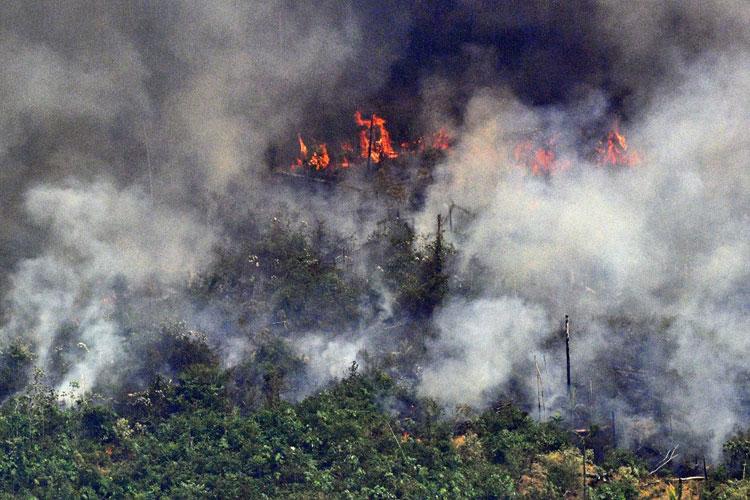 2019 é o pior ano de queimadas na Amazônia desde 2010, diz Nasa