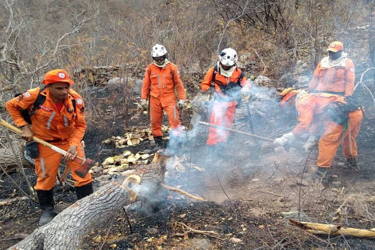 Bombeiros controlam incêndio na Serra de Maria Roxa em Paramirim