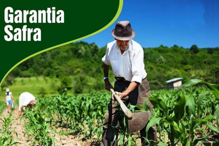 Garantia-Safra será pago aos agricultores de Brumado será pago no mês de abril