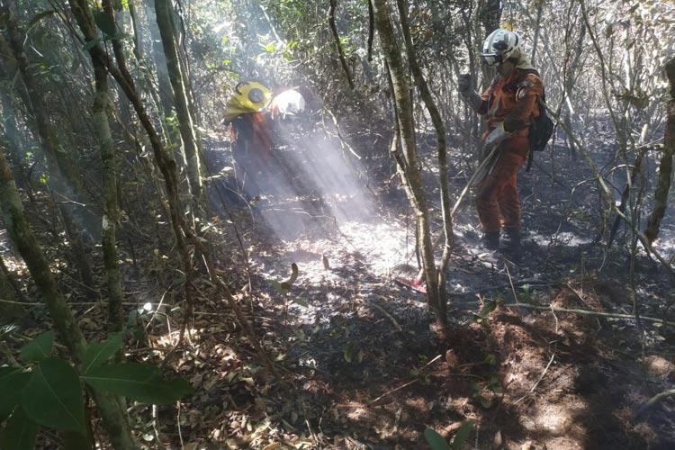 Rio de Contas: Incêndio controlado na Serra das Almas; cerca de 2 mil hectares de área nativa foram queimados